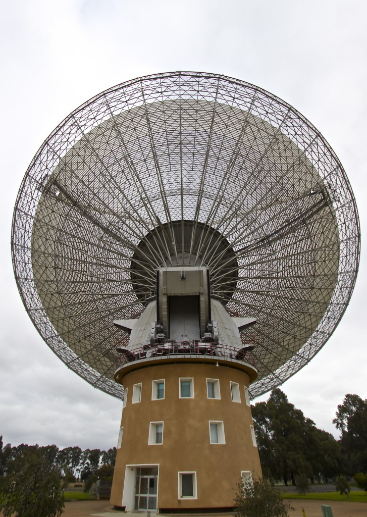Close view of the dish